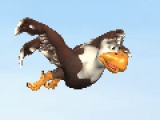Коко сумасшедший цыпленок