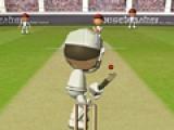 Крикет 2