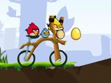 Месть сердитых птиц на велосипеде