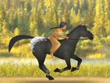 Гонка на лошадях Каи