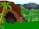Побег на природе - Джунгли