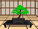 Побег из храма ниндзя