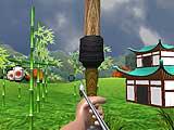 Эксперт стрельбы из лука 3D: Япония