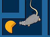 Лабораторная крыса: поиски сыра