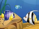 Рыба ест рыбу на троих