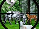 Охота в джунглях