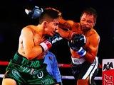 Битва чемпионов по боксу