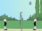 Волейбол дворецких
