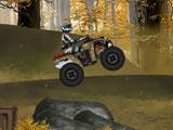 Лесной вызов, квадроцикл