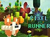 Пиксель раннер